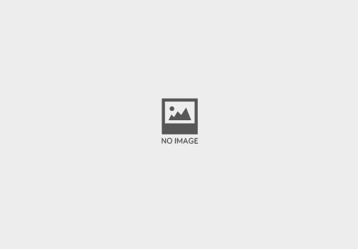 The North Face thumbnail