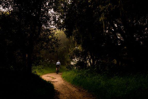 Walk, Run, Bike, or Blade the Capital Crescent Trail