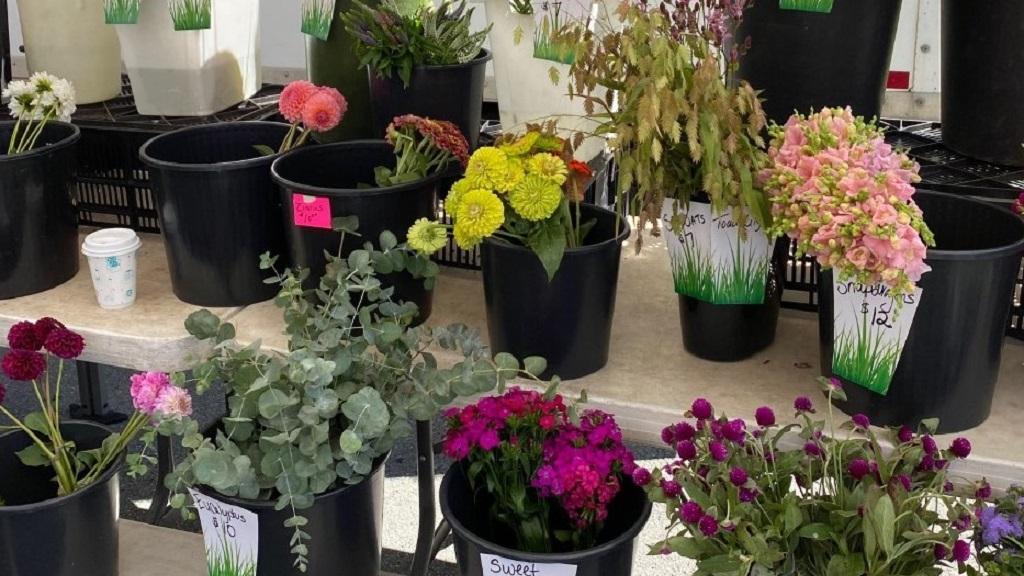 Visit The Elm Team at Bethesda Central Farm Market image